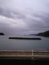201041_2